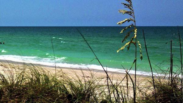 ready-generic-beach-scene-w_140223