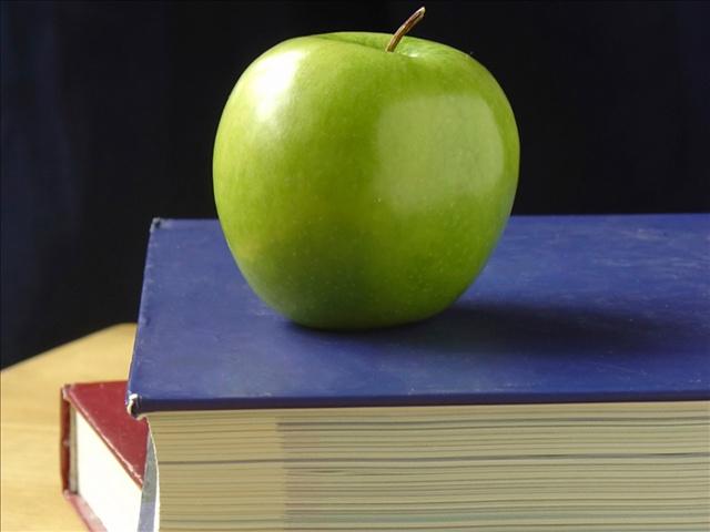 schoolbooks_46732