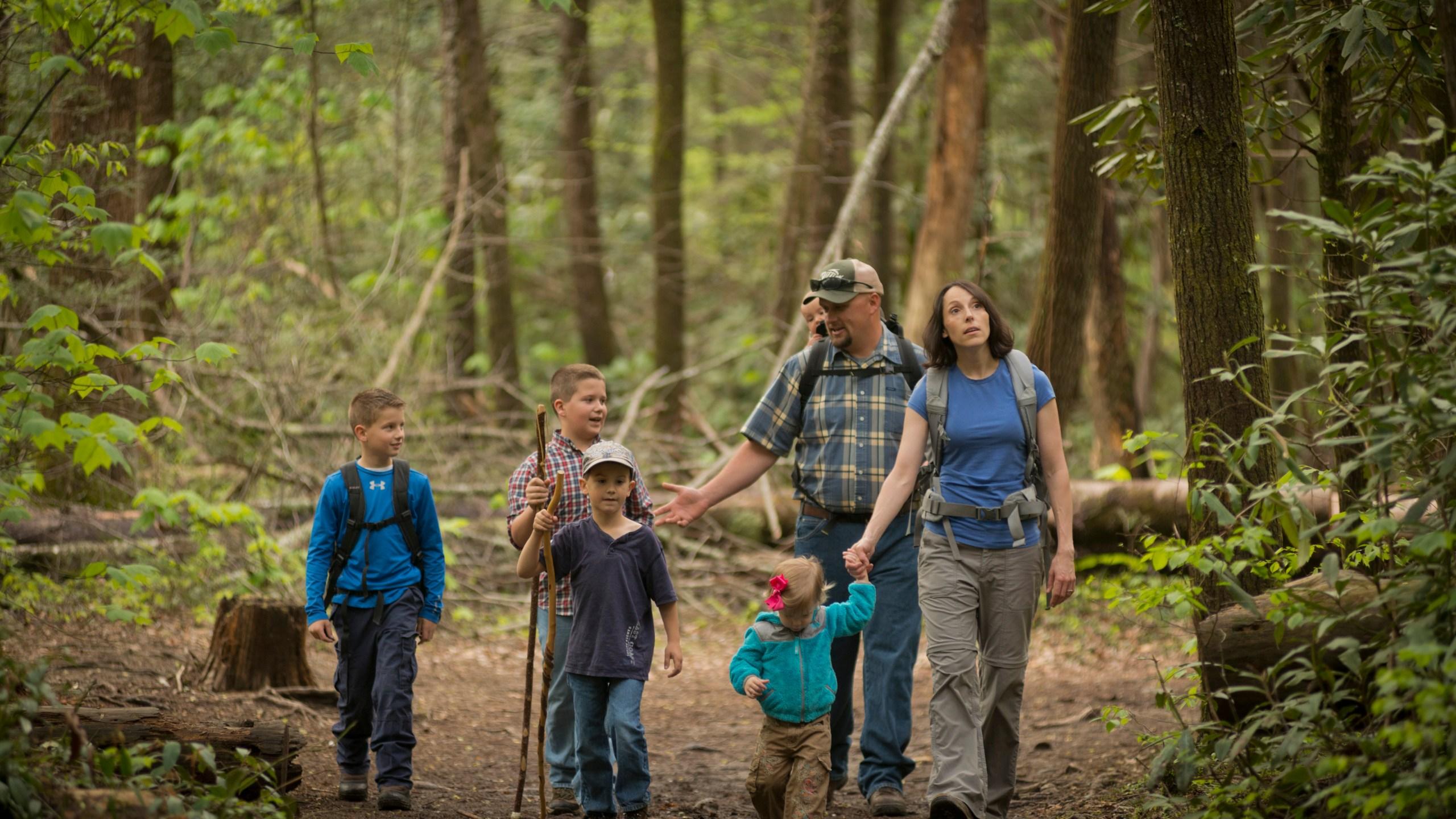 Summer Family Hikes_138030