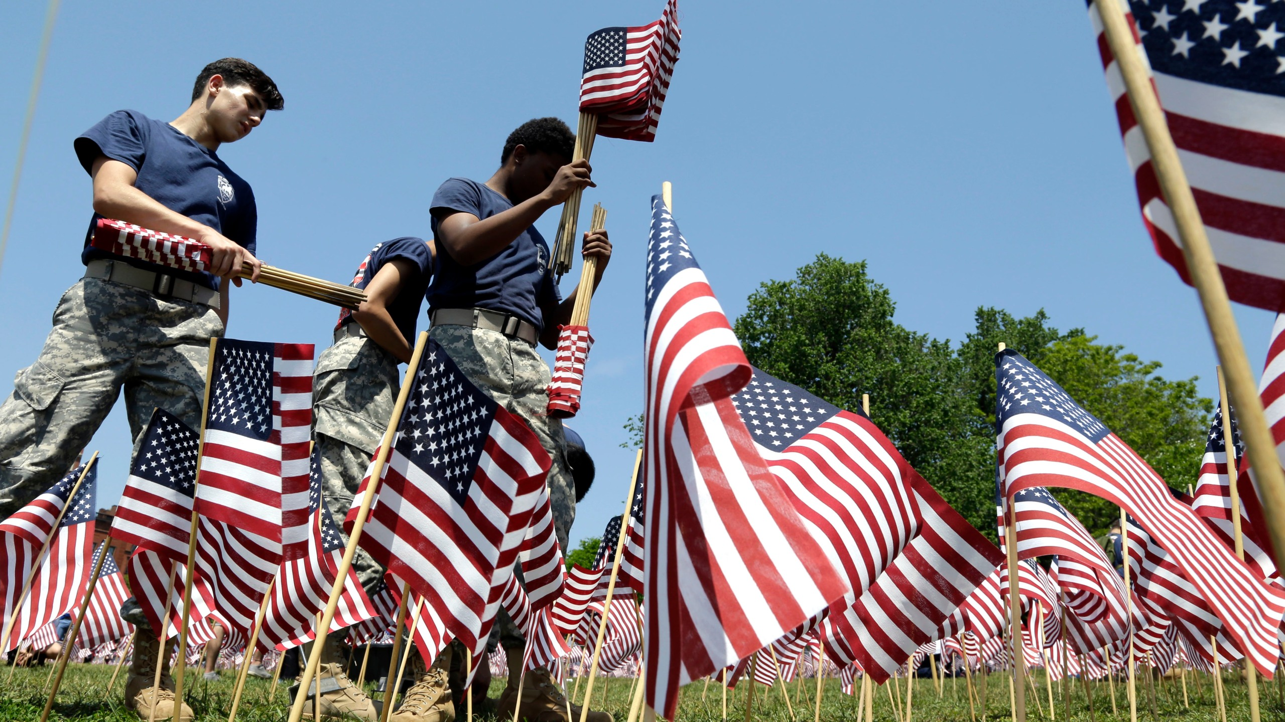 Memorial Day Flags_209457