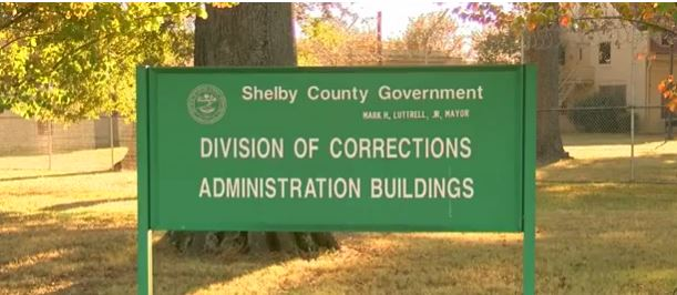shelby county corrections_248639