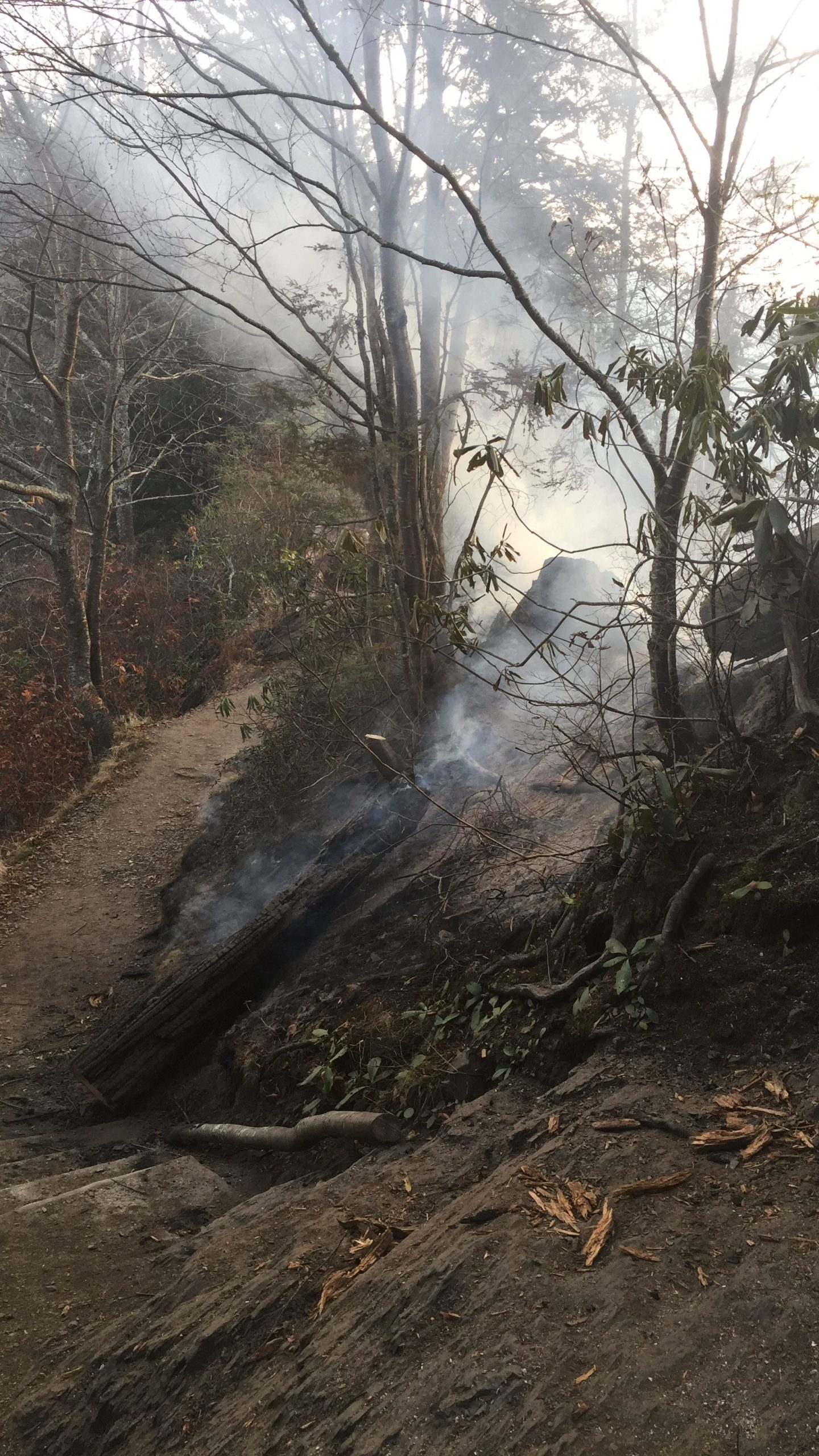 chimney-tops-trail-fire-2_248269