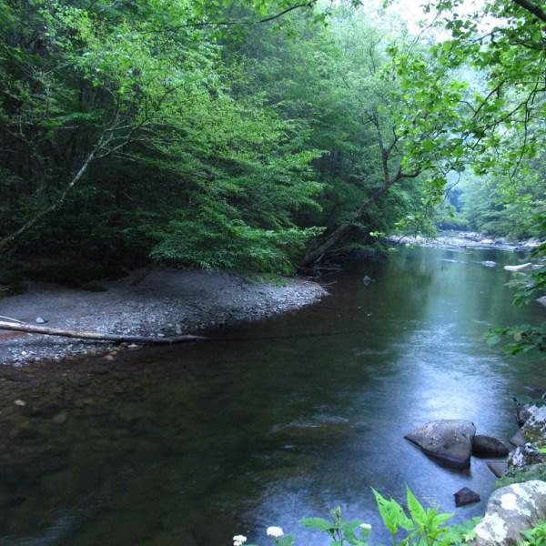 little-river-road_248200