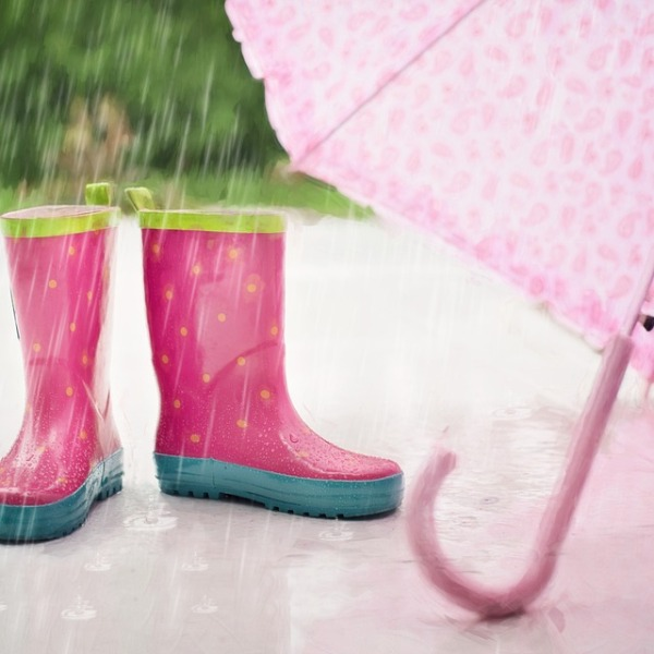 Rain_329137