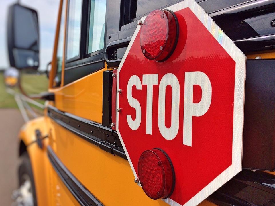 school bus_335955