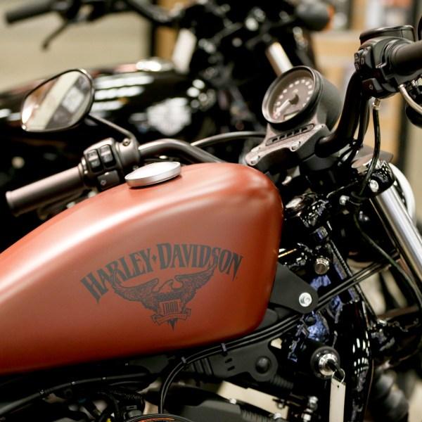 Earns_Harley-Davidson_18123-159532.jpg10352255