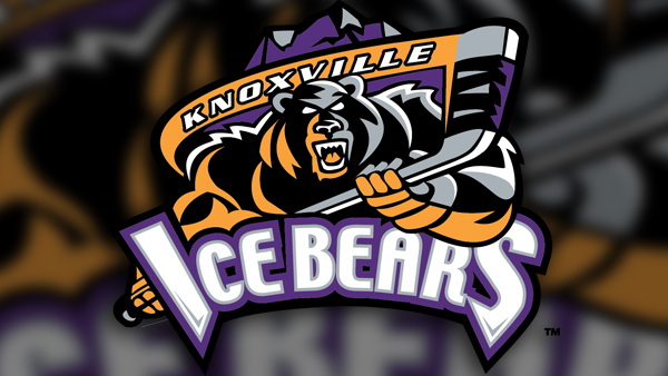 Ice bears logo