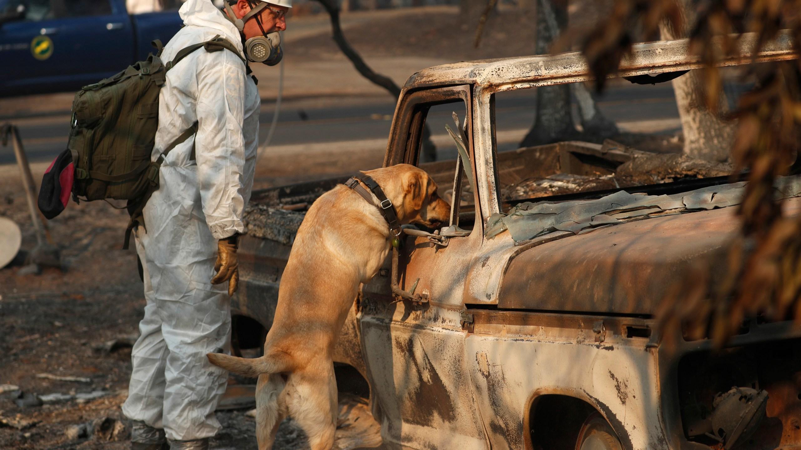 California Wildfires_1542471028377
