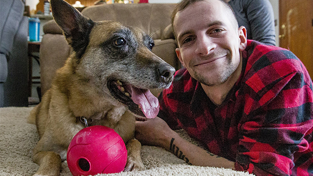 veteran_bomb_sniffing_dog