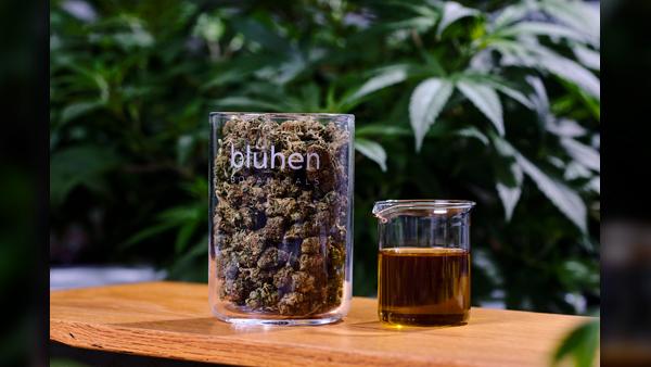 Blühen-hemp-flower-and-extracts_1550866135396.jpg