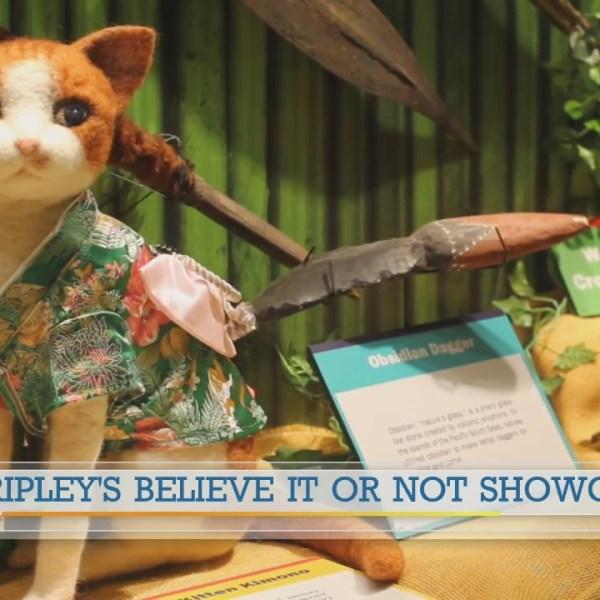 Ripley's Believe It or Not Showcase