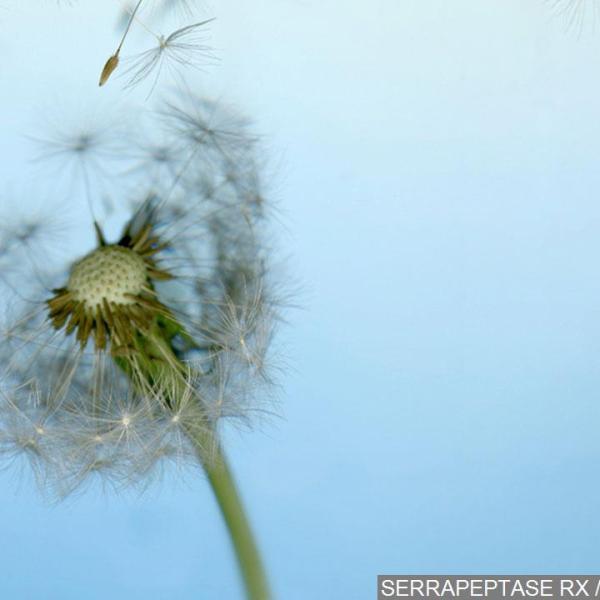 allergies_157895