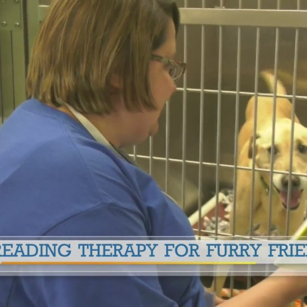 Humane Society reading therapy