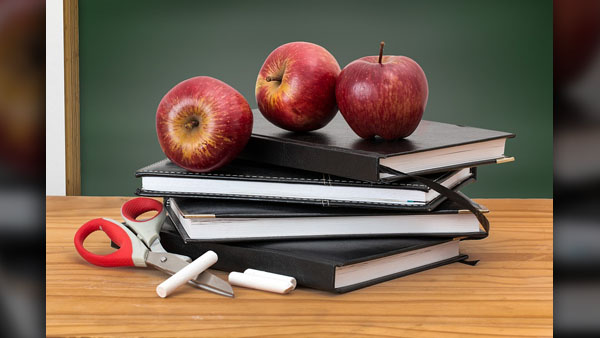 SCHOOL TEACHERS PRIMARY EDUCATION_generic_pixabay_photo_1554144699306.jpg.jpg