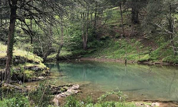 jackson county cave web_1555518221350.jpg-873703986.jpg