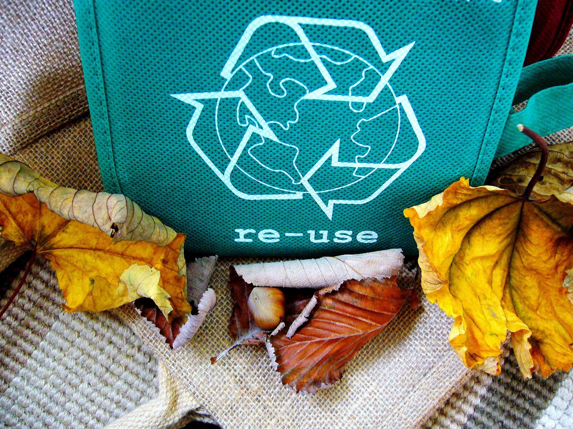 recycle-57136_1920_1556051983149.jpg
