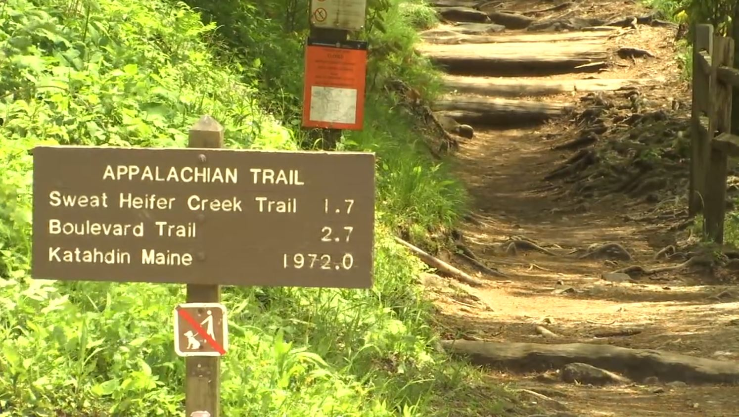COVER PHOTO_Appalachian Trail safety_0513_1557785251271.JPG.jpg