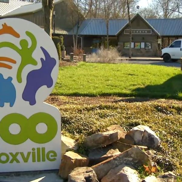 COVER PHOTO_Zoo Knoxville reopens after flood damage_0305_1551828830693.JPG.jpg