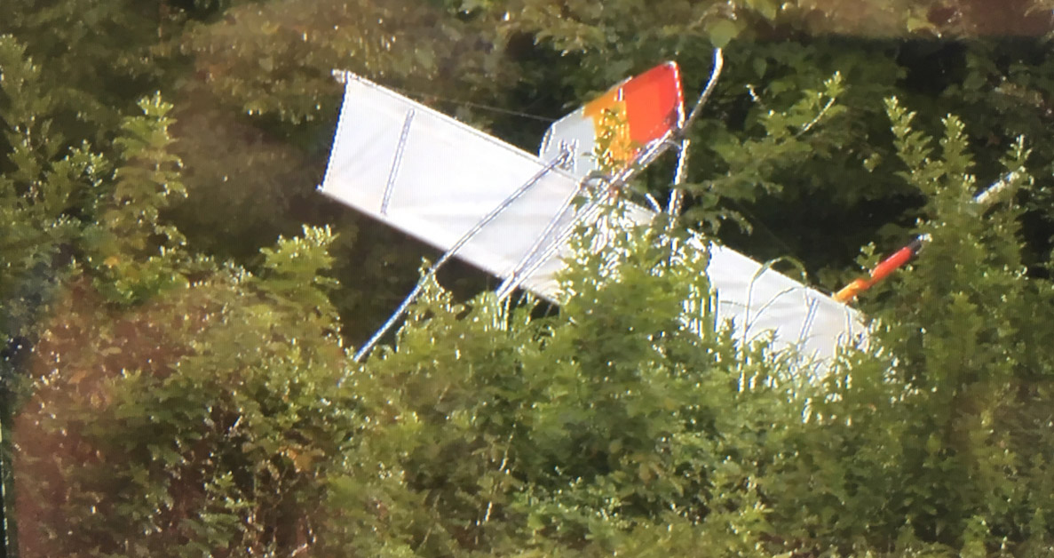 Light sport aircraft pilot killed in accident in Anderson