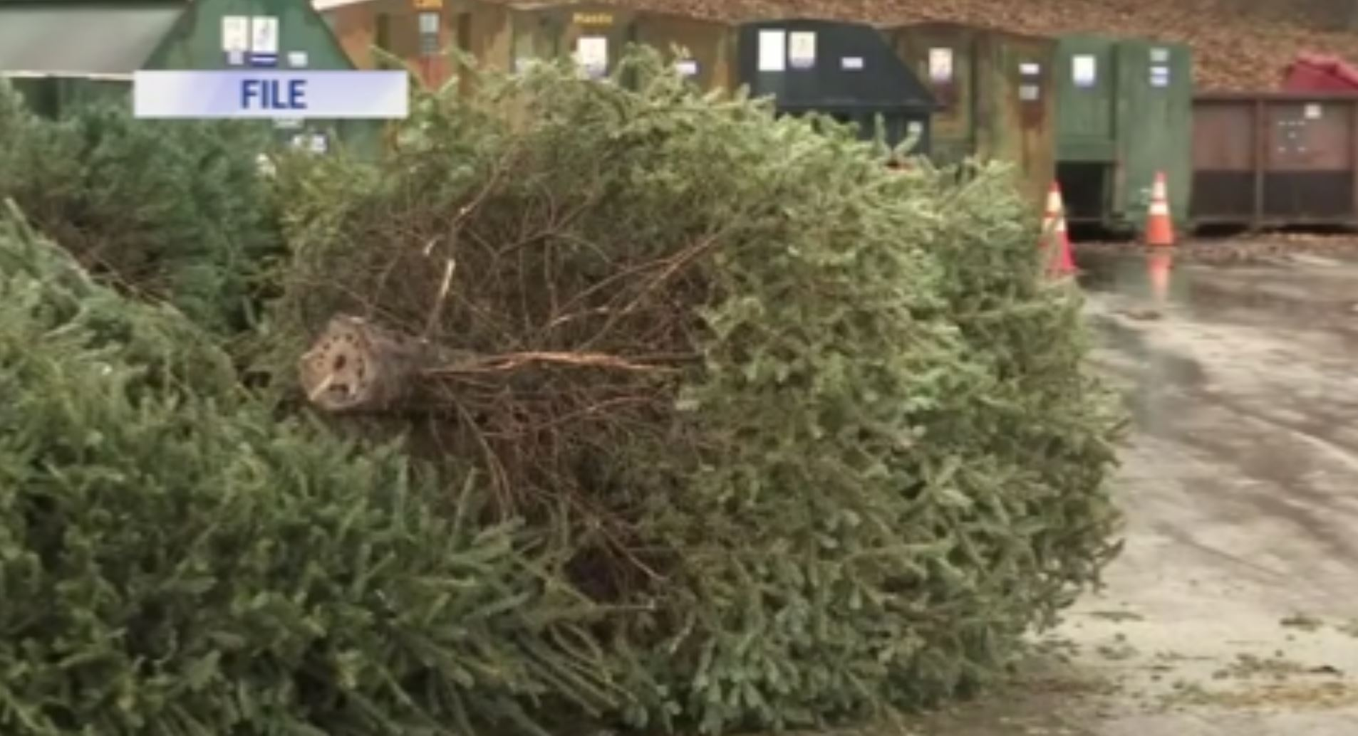 Christmas Toy Runs November 2021 Maryville Tn Where To Go And When For Christmas Tree Recycling Wate 6 On Your Side