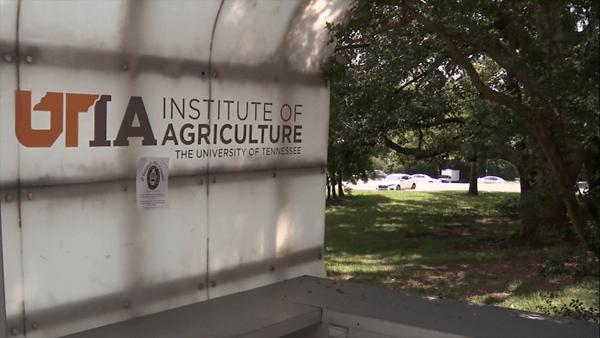 Ut institute of agriculture 100 year time capsule